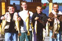 people,walleye